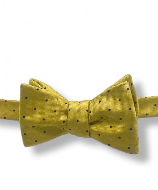 Gold and Navy Mini Polka Dot Bow Tie tied