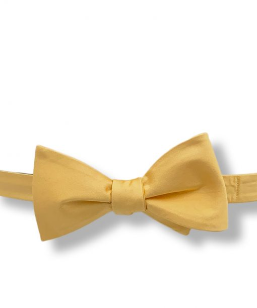 yellow silk bow tie that is self tie and shown tied